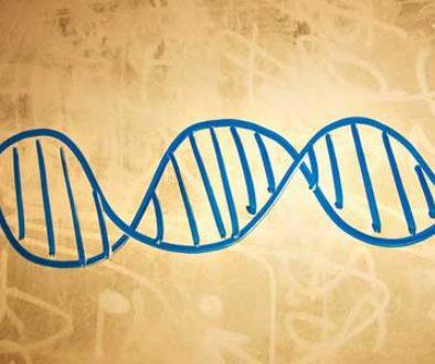 DNA-800x300